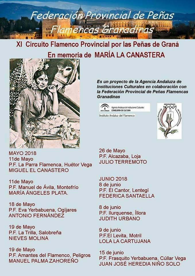 Resultado de imagen de XI Circuito Provincial de Flamenco