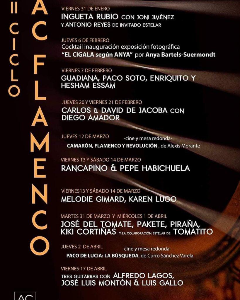 Cartel II Ciclo AC Flamenco