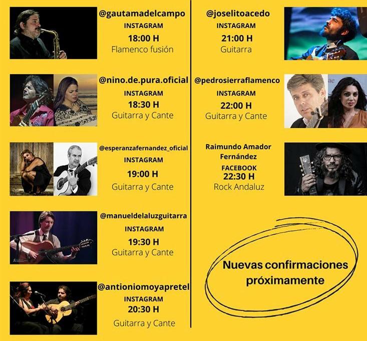 Cartel Conciertos de flamenco en casa