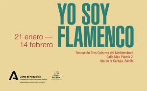 Yo soy flamenco