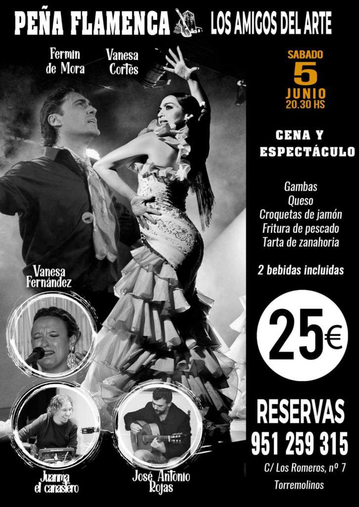 Espectáculos flamencos